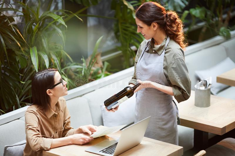 Советовать хорошему вину к клиенту в кафе стоковые изображения rf