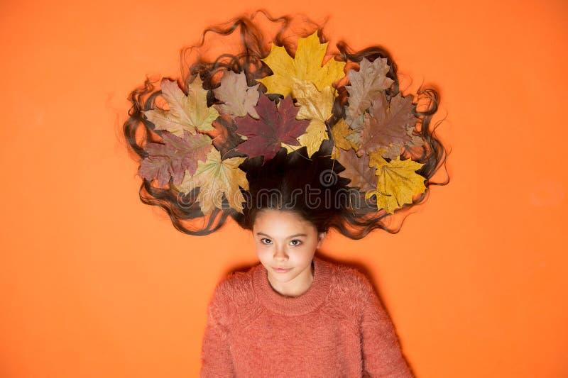 Советы по уходу за волосами добавляют к рутине падения Маленькая девочка, роскошные длинные волосы и павшие листья, Глубокое конд стоковое изображение rf