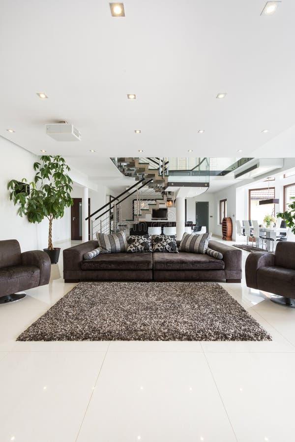 Современная и просторная гостиная стоковое изображение