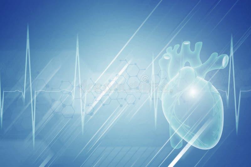 Современная концепция кардиологии медицины иллюстрация штока