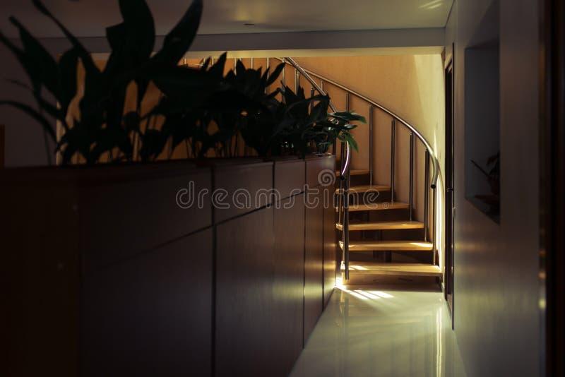 Современная лестница древесины дуба стоковое изображение