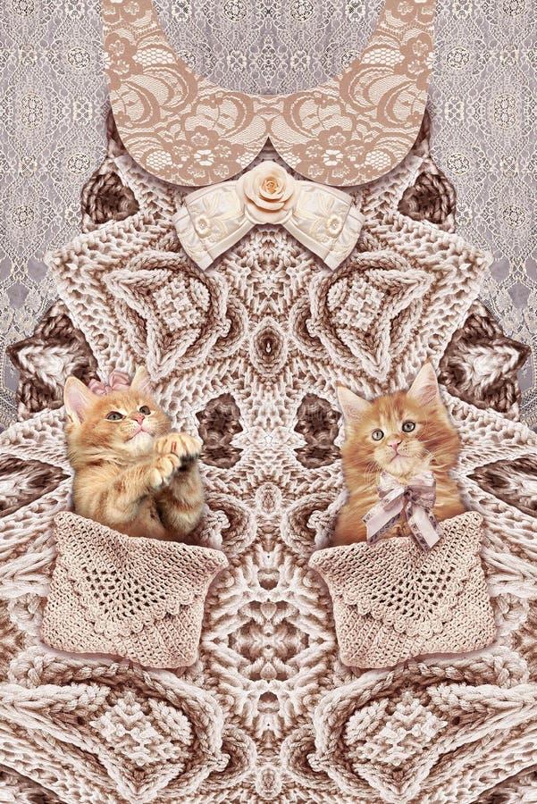 Современная печать с связанными платьем и котятами стоковые фото