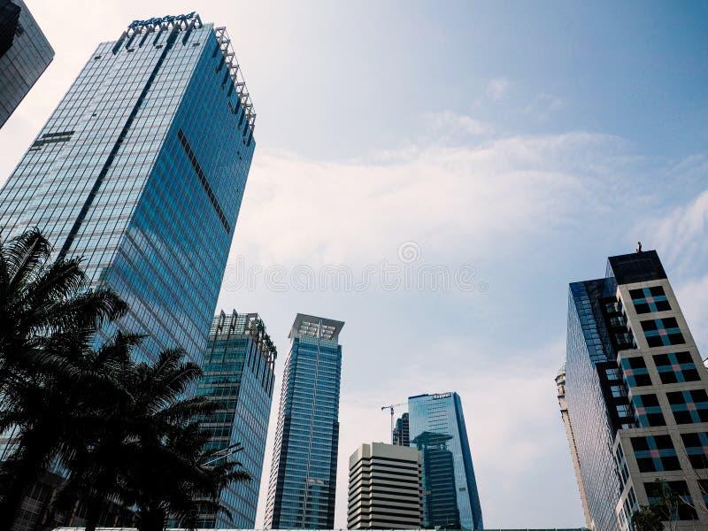 Современные здания от взгляда низкого угла на дневном свете стоковое изображение rf