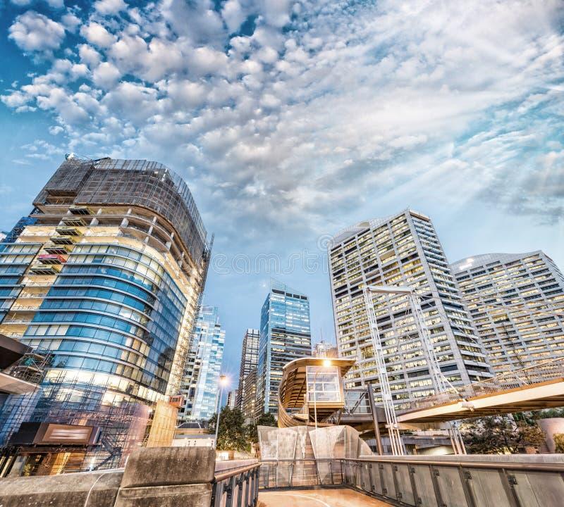 Современные здания гавани милочки, Сиднея Горизонт ночи города стоковое изображение