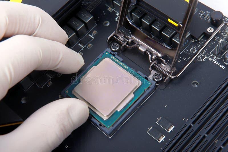 Современные процессор и материнская плата компьютера стоковые изображения rf