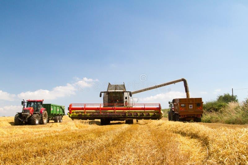 Современные урожаи вырезывания жатки зернокомбайна класса стоковая фотография rf