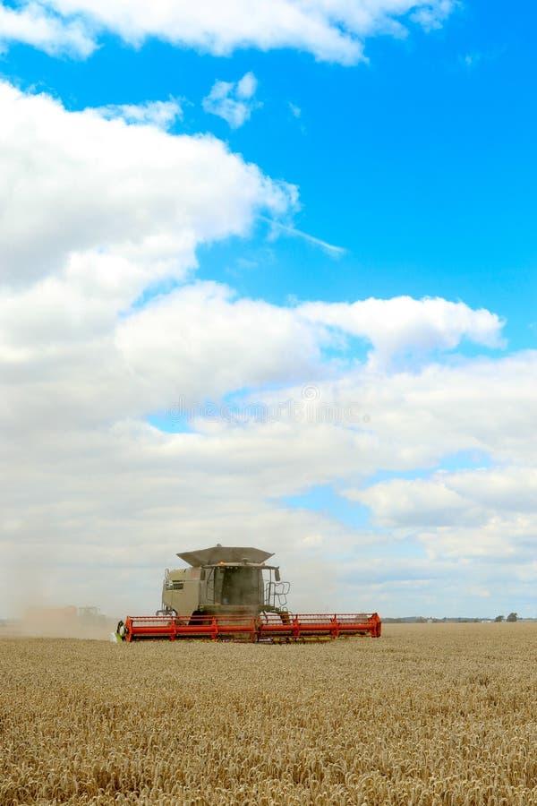 Современные урожаи вырезывания жатки зернокомбайна класса стоковое изображение rf