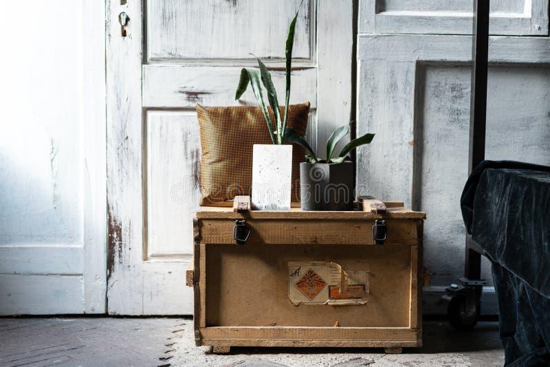 Современный дизайн интерьера просторной квартиры живущей комнаты Серые деревянные стены с свободным copyspace Зеленый цвет тенден стоковое изображение rf