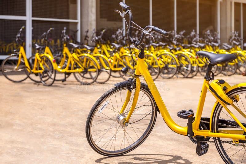 Современный желтый велосипед для ренты с много таких же желтых велосипедов стоит стоковое изображение