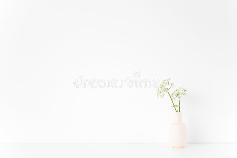 Современный крытый интерьер Белая ваза с одичалым хозяином на белой предпосылке Милое мягкое домашнее оформление Модель-макет стоковое изображение