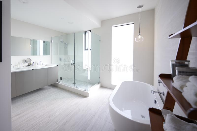 Современный отечественный bathroom с кабиной ливня и freestanding ванной, солнечным светом, отсутствие людей стоковое фото rf