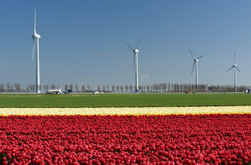 Современный поворот ветротурбин в сельских Нидерландах стоковое фото rf