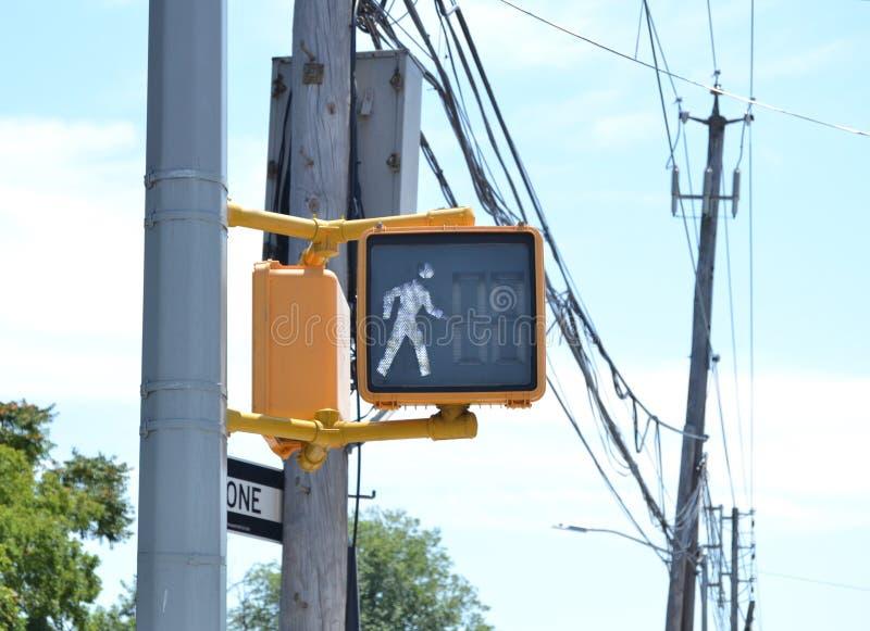 Современный светофор стоковое изображение rf