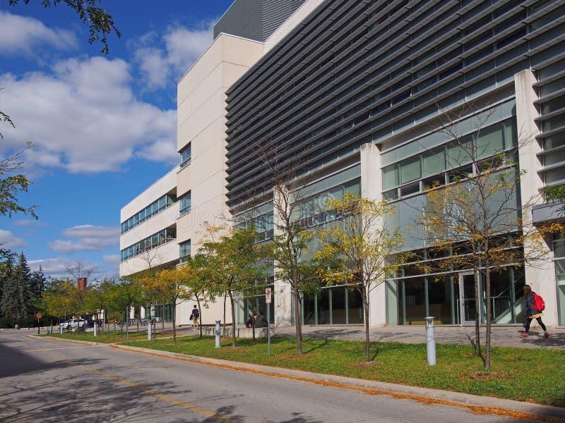 Современный университетский кампус стоковые изображения