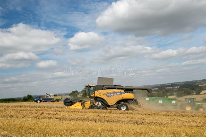 2 современных урожая вырезывания жатки зернокомбайна стоковое изображение rf