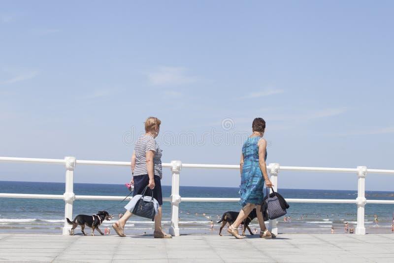 Соедините женщин и собаки пар идут на набережную Gijón стоковые изображения rf