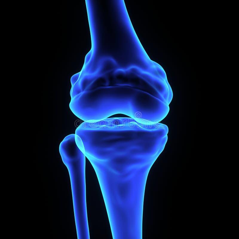 Соединение колена иллюстрация штока