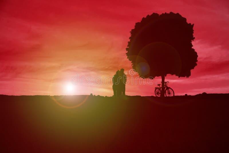 Соедините наблюдать заход солнца рядом с деревом и велосипедом стоковое фото