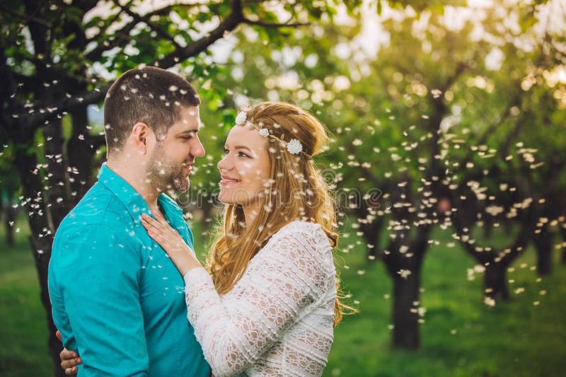 Соедините обнимать и целовать в древесине вишни на заходе солнца стоковое фото rf