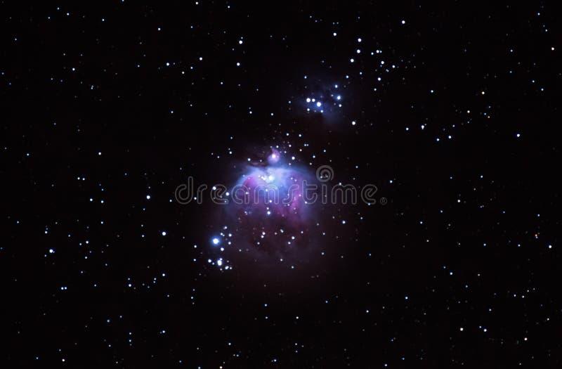 Созвездие Ориона стоковое изображение rf