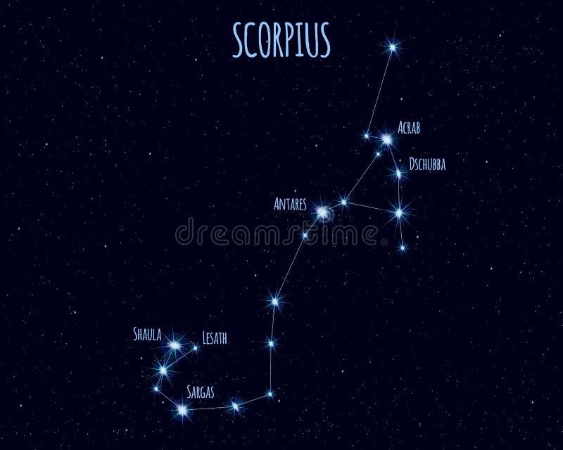 Созвездие Scorpius, иллюстрация вектора с именами основных звезд иллюстрация штока