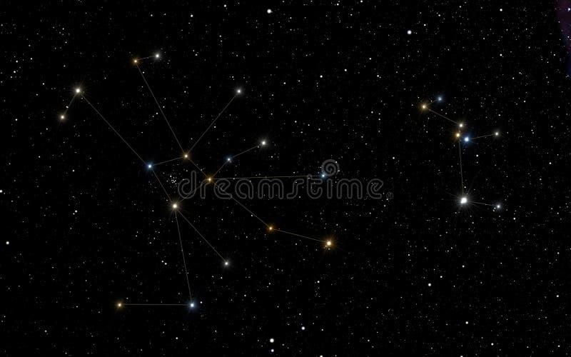 Созвездия Карциномы и несовершеннолетнего волка стоковая фотография
