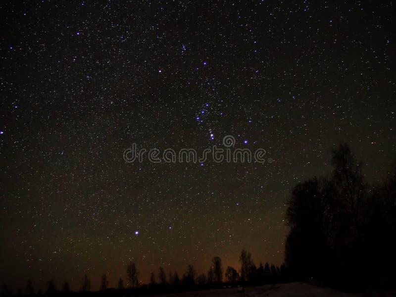 Созвездие Ориона стоковые фотографии rf