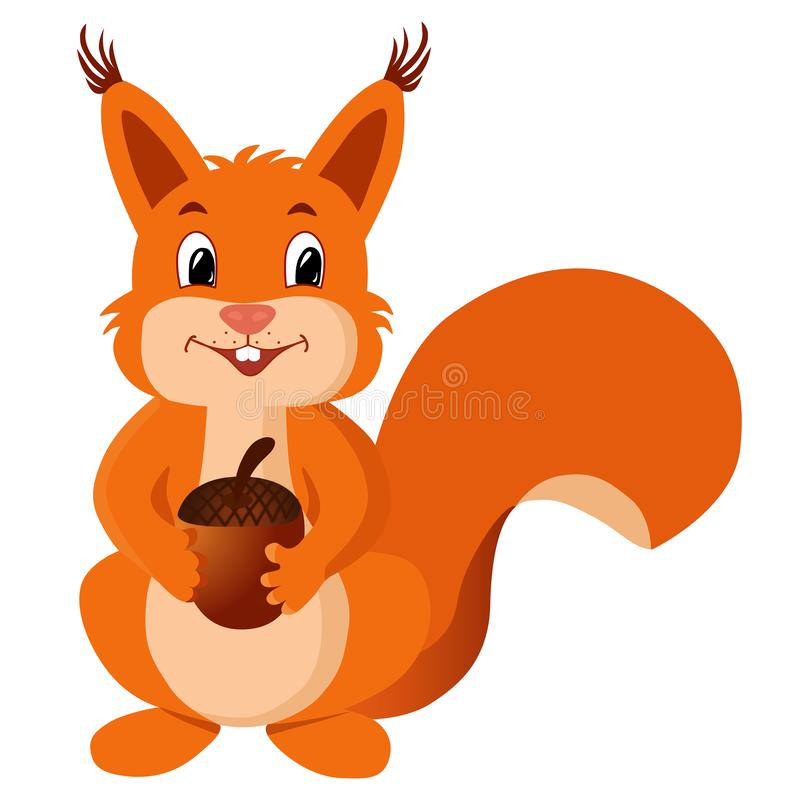 Squirrel with a nut. Funny vector illustration. stock image