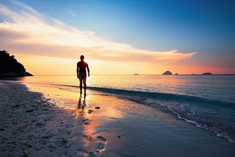 Созерцание на тропическом пляже стоковые фото
