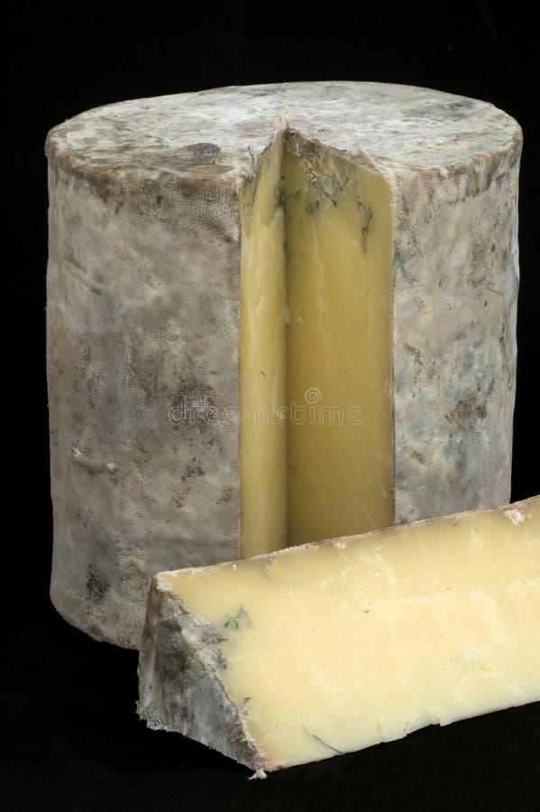 созретый сыр чеддера подземелья отрезано стоковое изображение