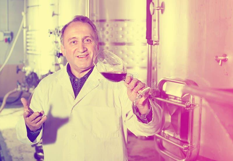 Создатель вина контролирует качество вина стоковые фотографии rf