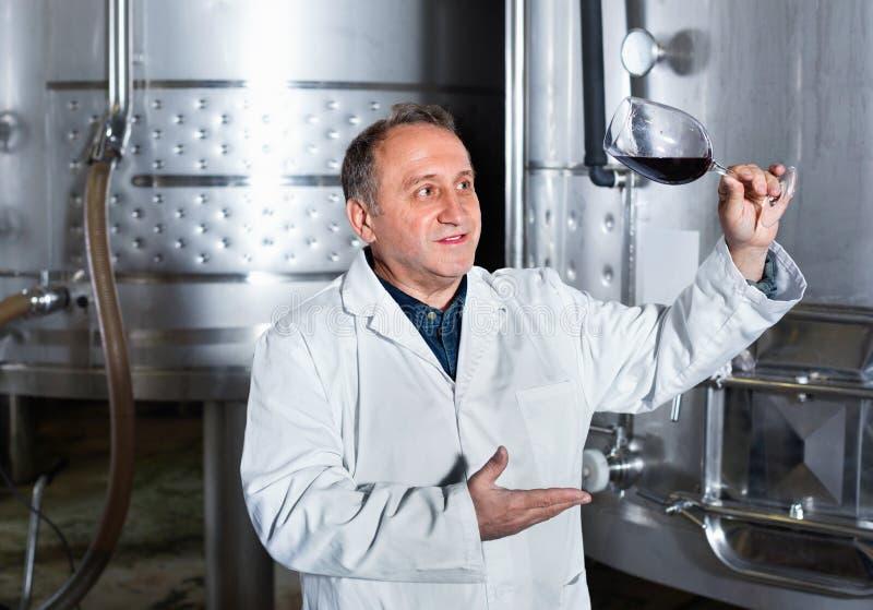 Создатель вина контролирует качество вина стоковые фото