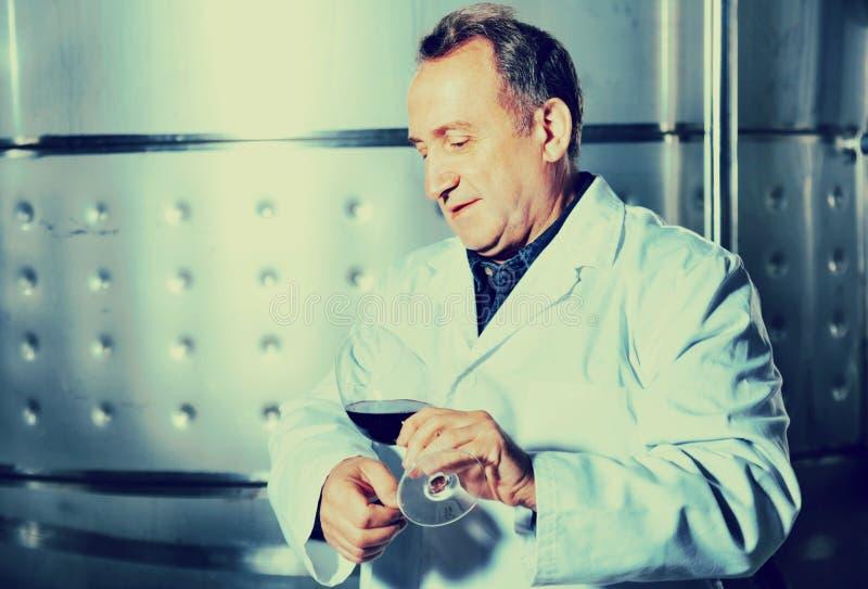Создатель вина контролирует качество вина стоковые изображения rf