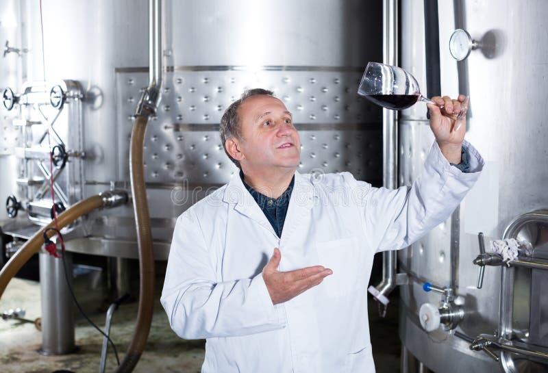 Создатель вина контролирует качество вина стоковое фото