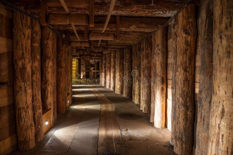 Солевой рудник Wieliczka эксплуатируемый непрерывно с th стоковое изображение