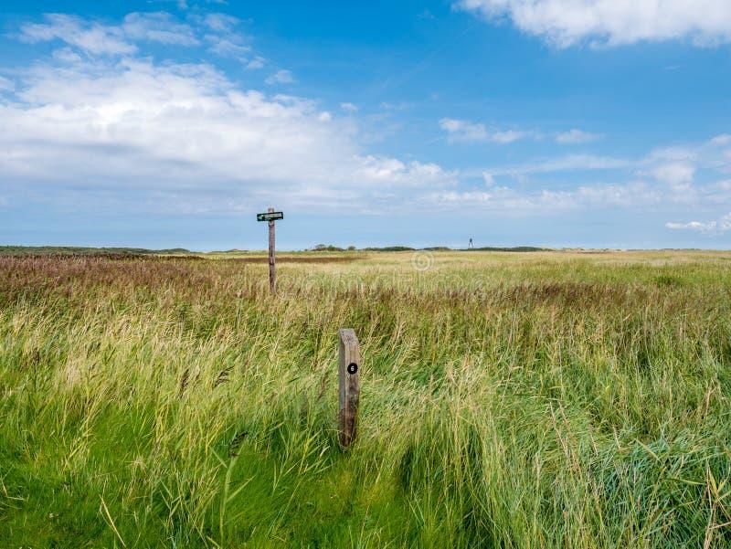 Соленые болота без предупредительного знака и маяка входа в Het Oerd заповедника на западном острове Ameland Frisian, Фрисландии, стоковое фото