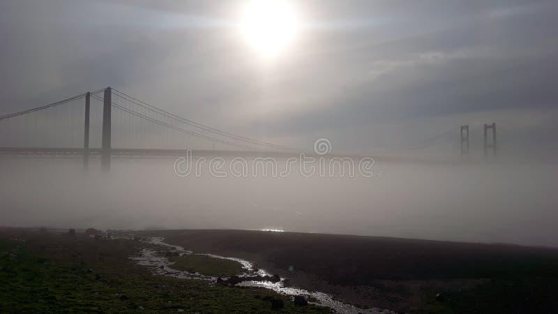Солнечное раннее утро стоковые фотографии rf