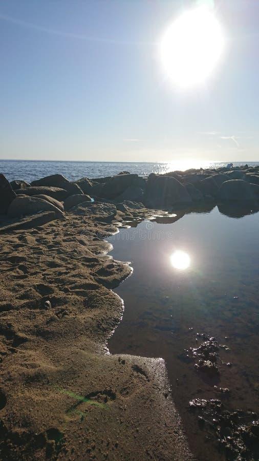 Солнечное солнце стоковые фотографии rf