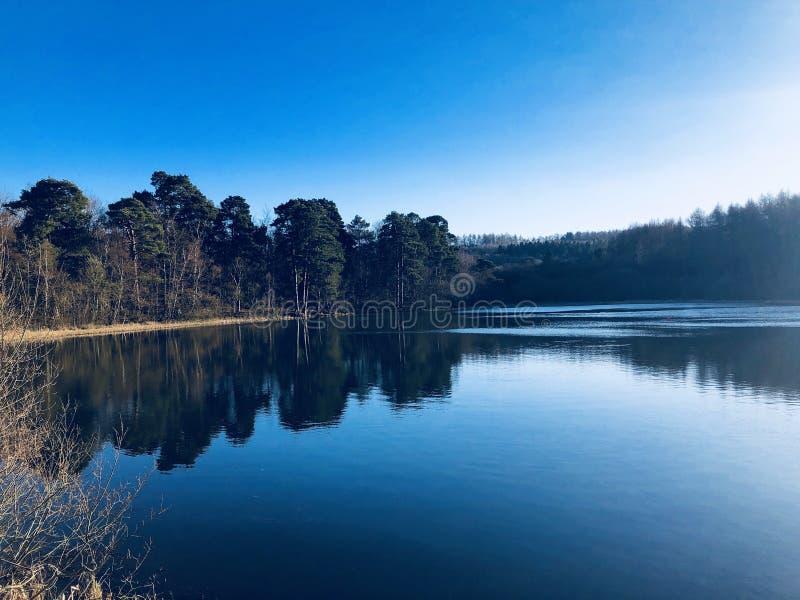 Солнечность зимы над озером стоковое фото rf