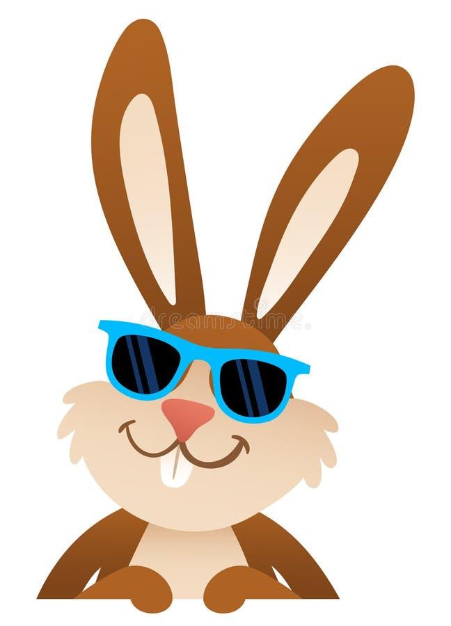 Солнечные очки зайчика пасхи мультфильма нося стоя за пустой доской иллюстрация штока