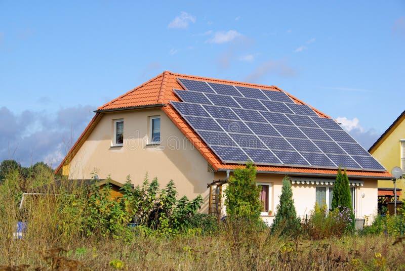 Солнечный завод стоковые изображения