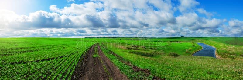Солнечный ландшафт весны с земной проселочной дорогой пропуская через зеленые поля и холмы стоковое изображение rf