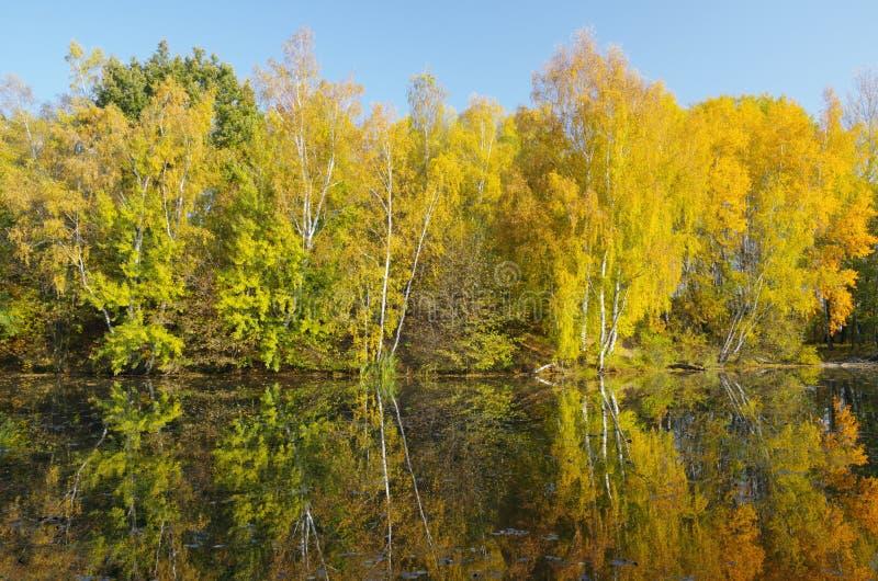 Солнечный октябрь стоковое изображение