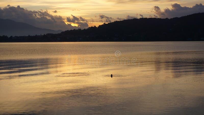 Солнечный свет отражая на поверхности воды стоковое фото rf