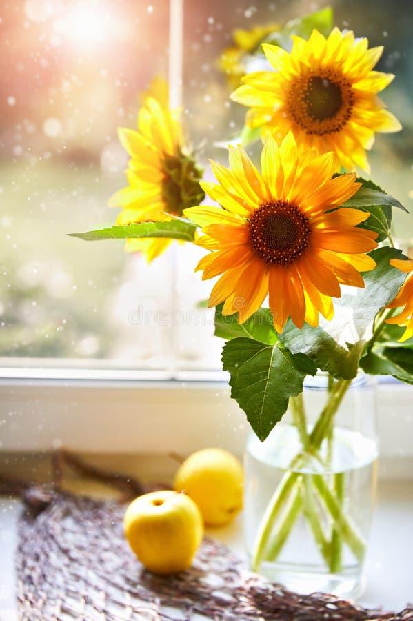Солнцецветы букета на солнечном окне Summery все еще стоковые изображения