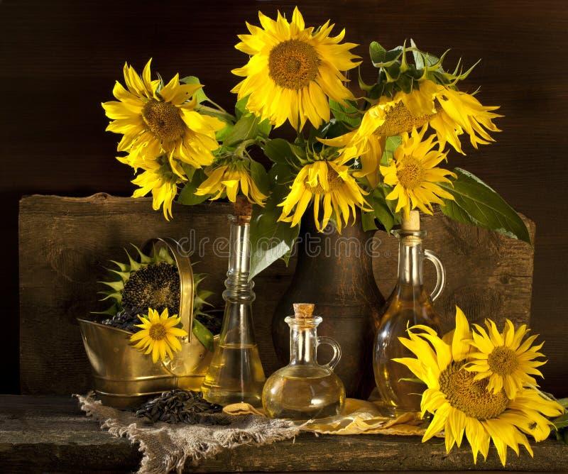 солнцецвет масла стоковая фотография rf