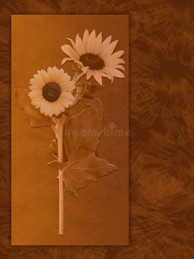 солнцецвет предпосылки бесплатная иллюстрация