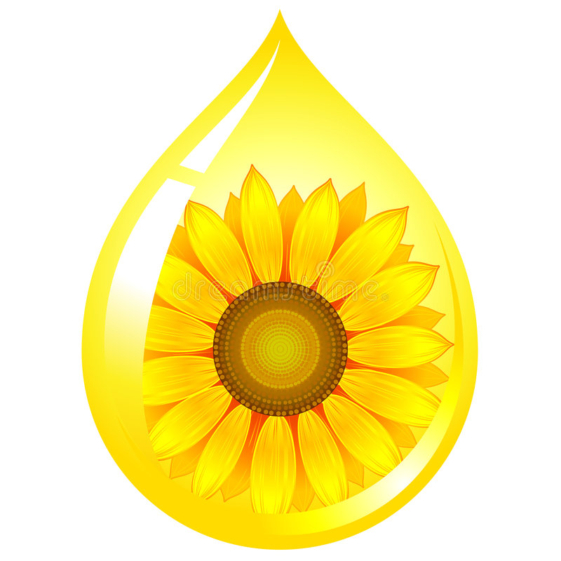 солнцецвет семени масла иллюстрация вектора