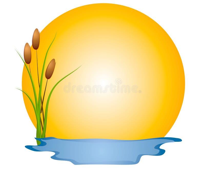 солнце болотоа зажима cattails искусства бесплатная иллюстрация