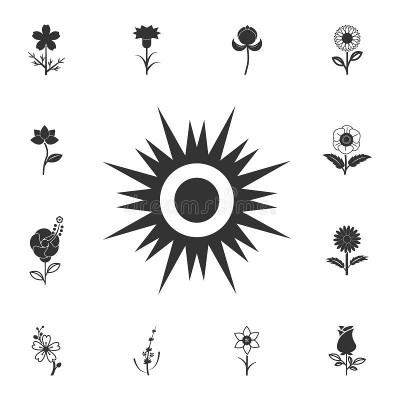 Солнце вектора икона Детальный комплект иллюстраций цветка Наградной качественный значок графического дизайна Один из значков соб иллюстрация вектора